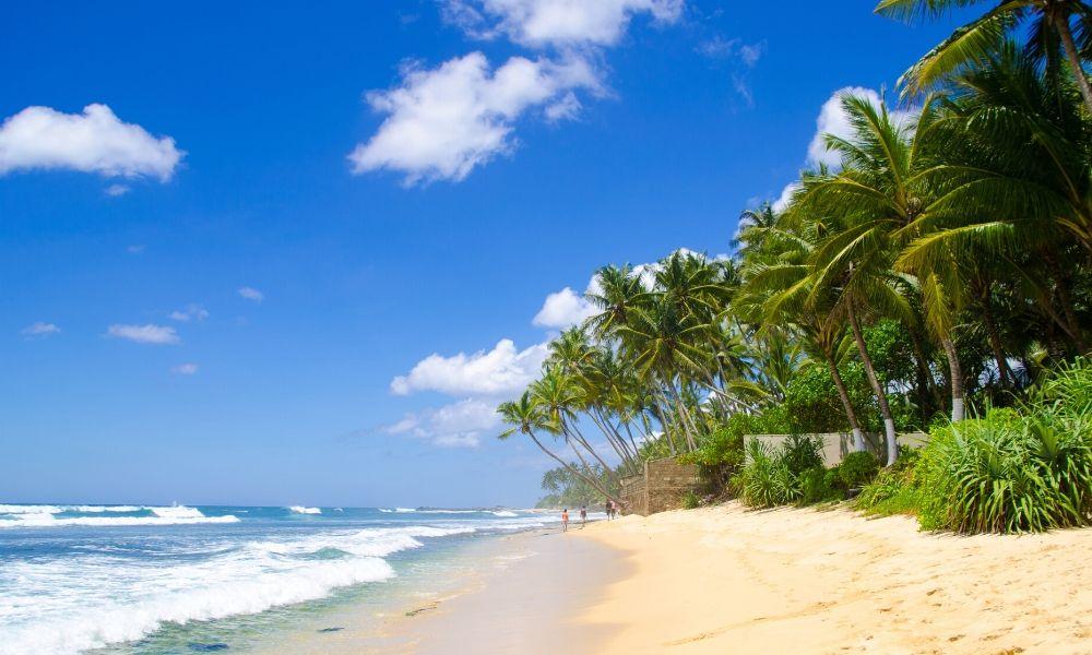 wypoczynek na Sri Lance